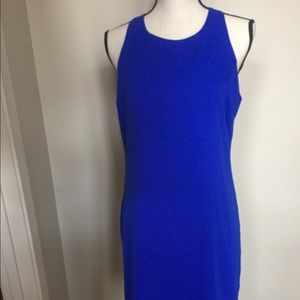 NWT Piperlime Tinley Road Audrey cobalt dress. M